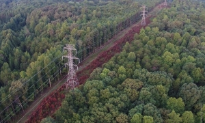 Proposed Duke transmission line sparks controversy